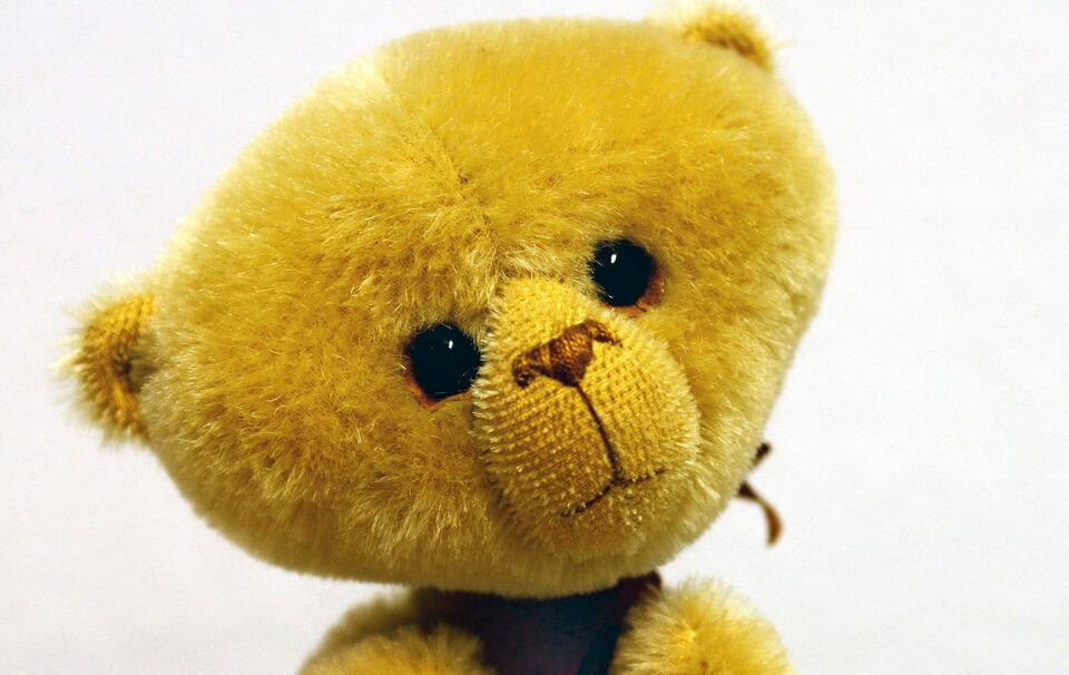 2 j hriges kind mit teddy ausgeb xt lokalnachrichten aus dem chiemgau stadt und landkreis. Black Bedroom Furniture Sets. Home Design Ideas